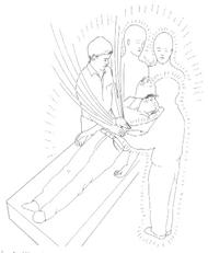 Imagen 11